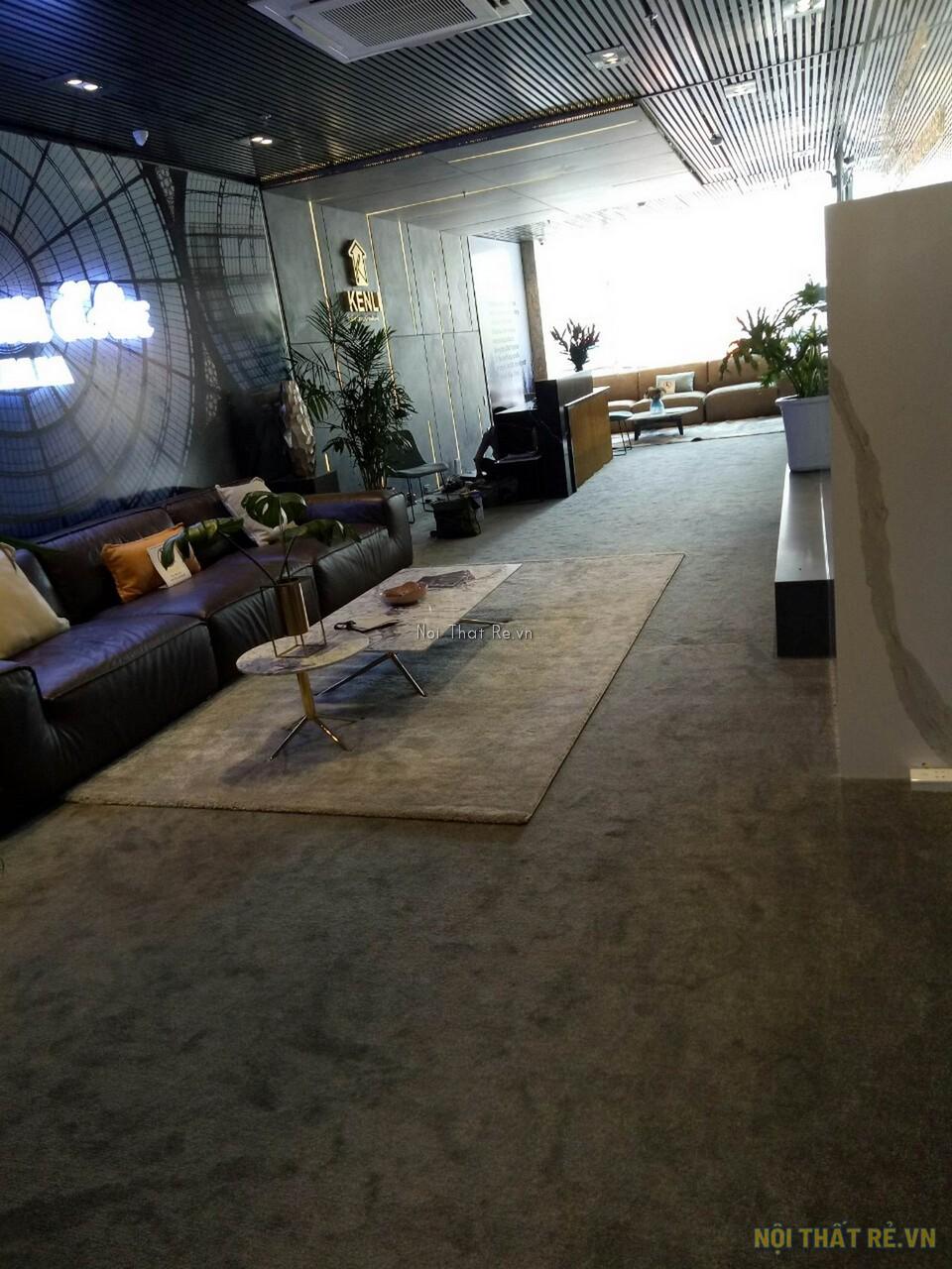 showroom trưng bày sofa trải thảm trang trí
