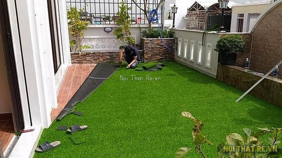 thảm cỏ sân vườn